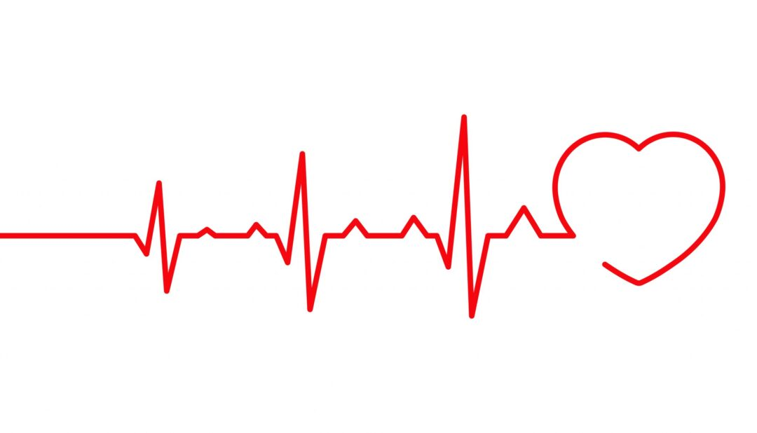 The Texas Heartbeat Law